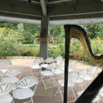 Barbara Lepke-Sims plays wedding harp music at the Monet garden in Denver, Colorado.